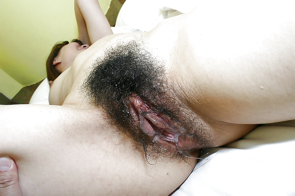 Japanese hairy pussy and hairy vagina photos
