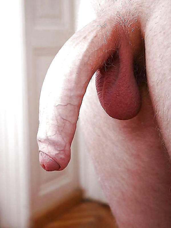 фото висячих пенисов секс фото