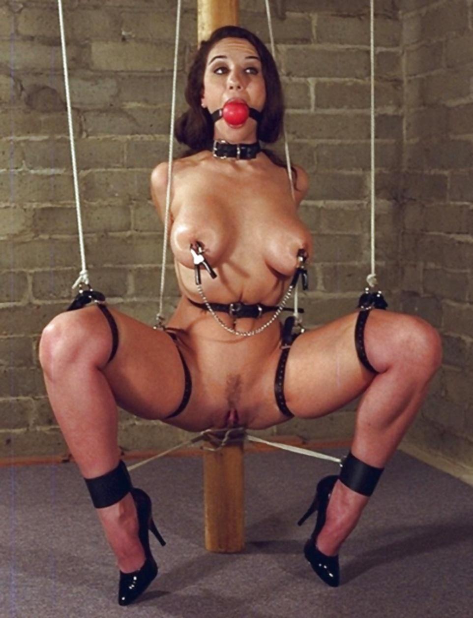 Pornstar Shyla Stylez Tied Up
