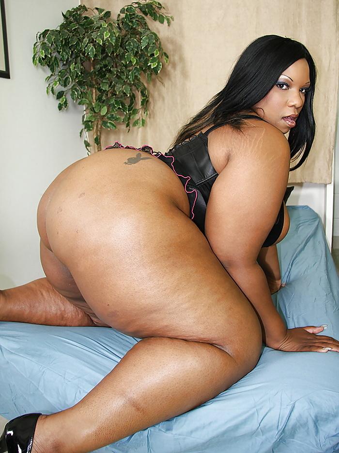 Extra large ass ebony free sex pics