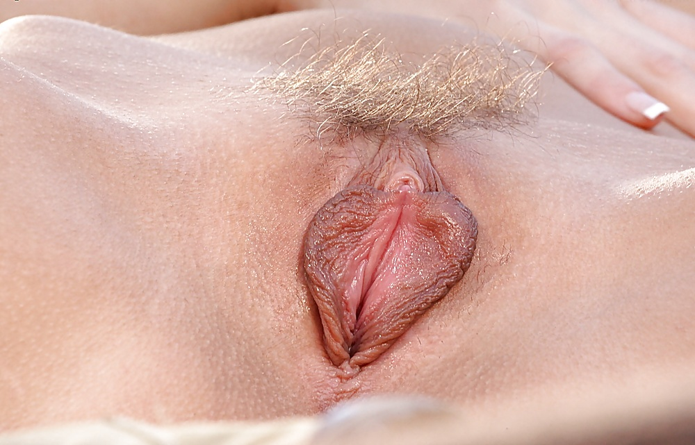 Hotties with untrimmed pussy lips are screwed nasty