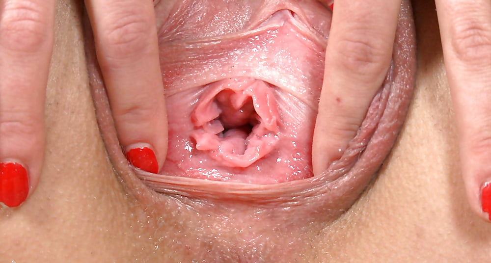 Close up vulva free videos — photo 15