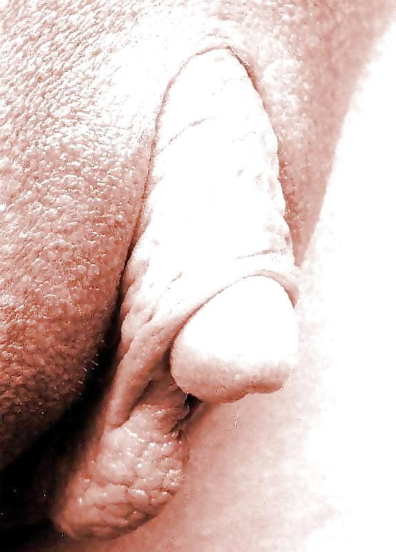 самые большие гениталии - 5