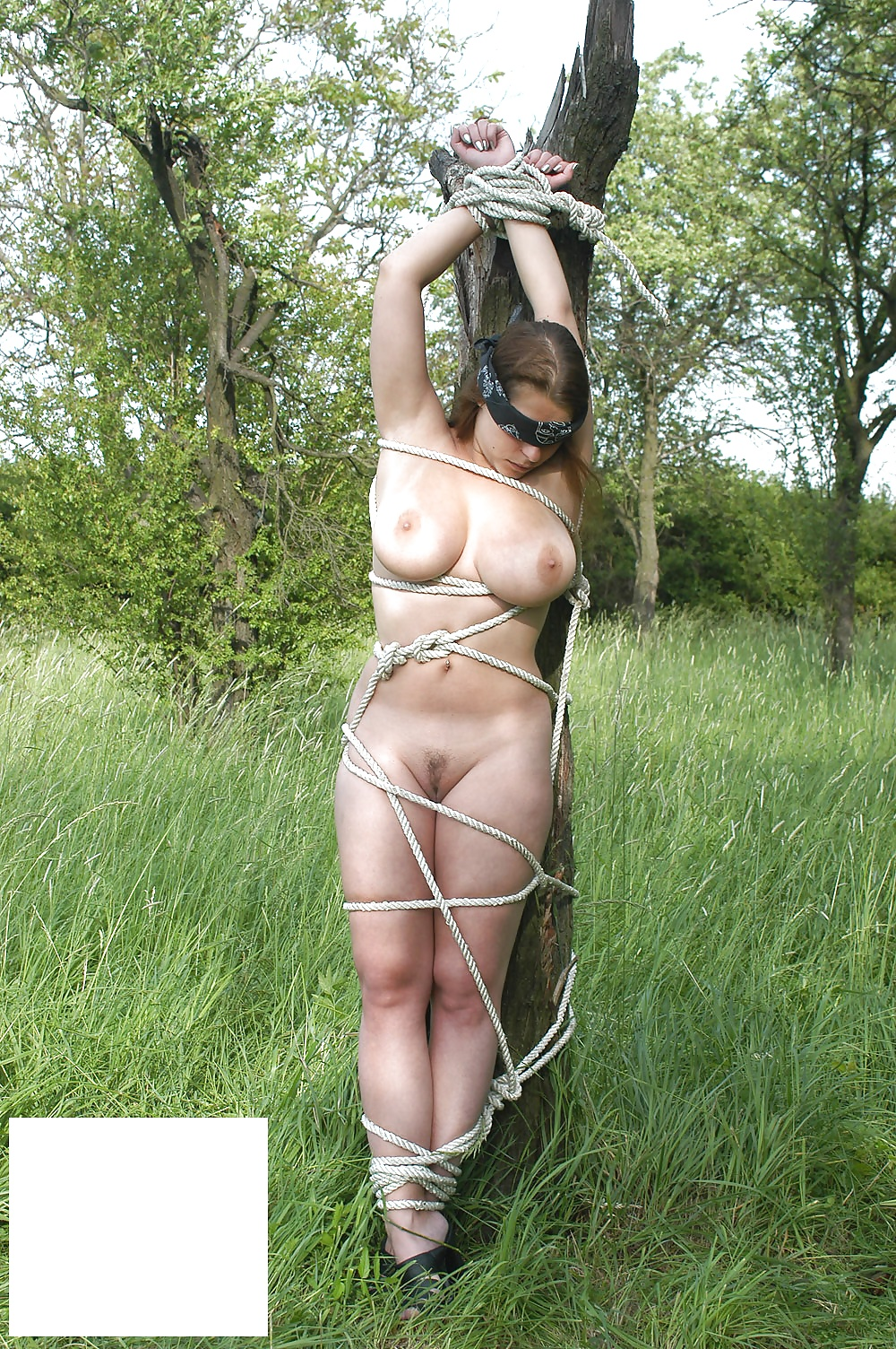 Schoolgirl shione cooper gets bound naked outdoors