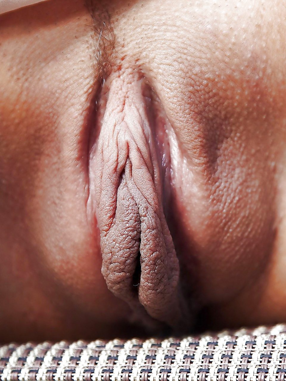 Open Butterfly Long Pussy Lips With Chains Free Full Hd Photo