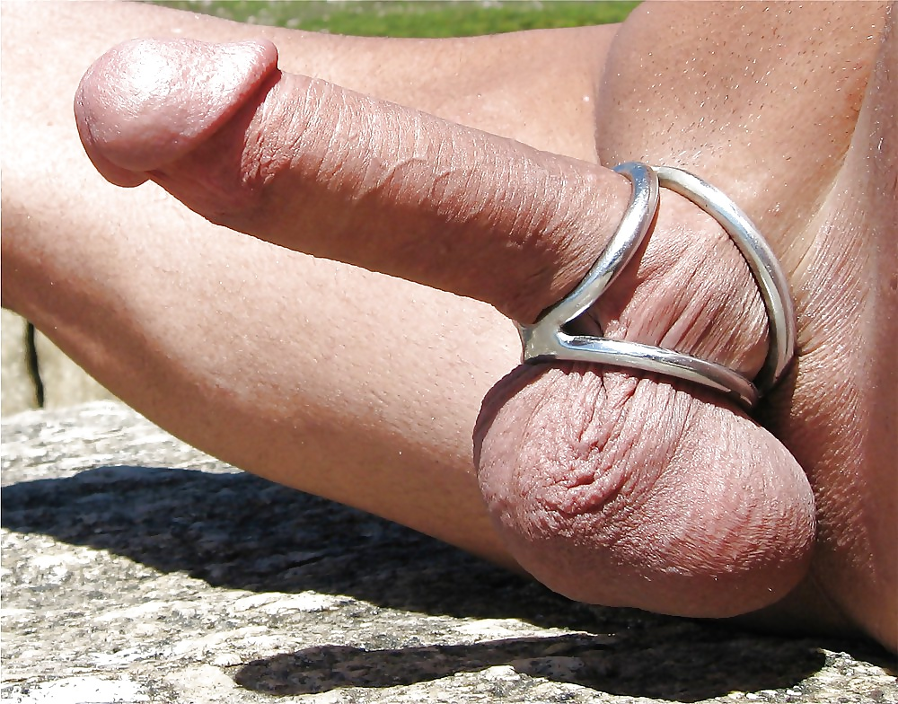 Chastity cock ring