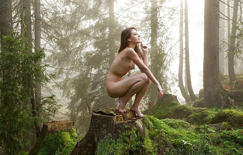 porno-shikarnaya-devushki-les-priroda-banya-video-s-perevodom-seksualnie-trusiki