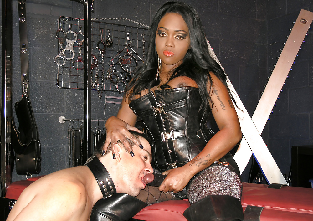 Free dominatrix porn with black men