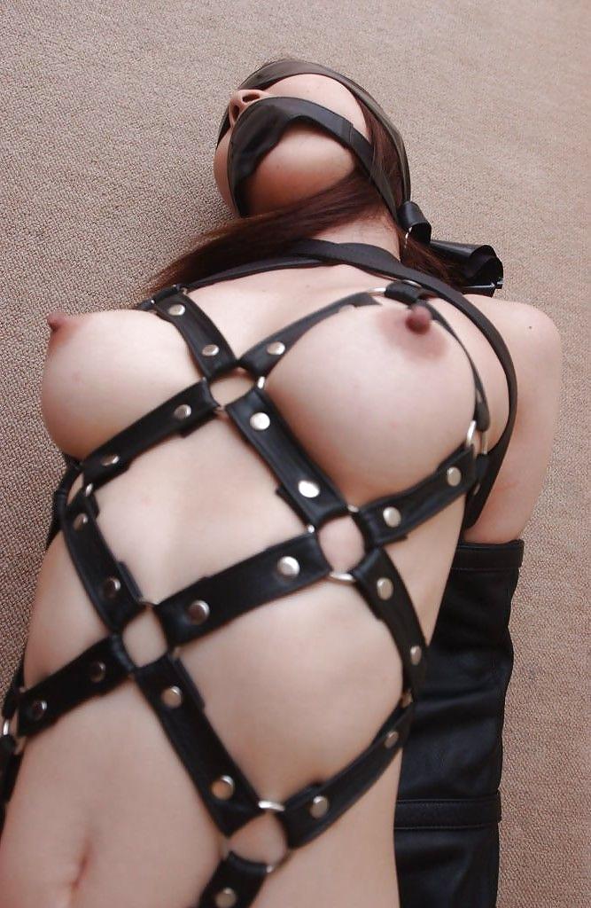 Harness lingerie pics