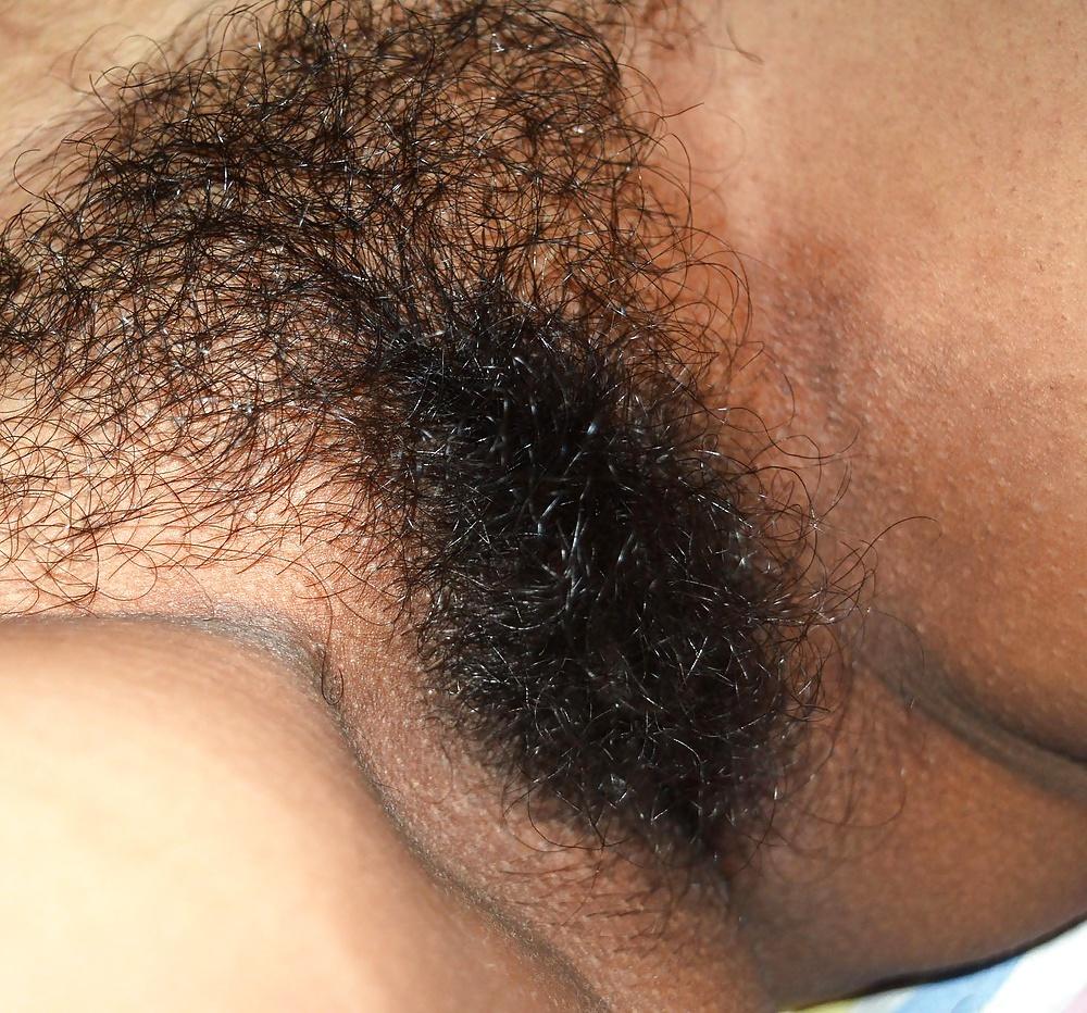 Big hairy bush movie