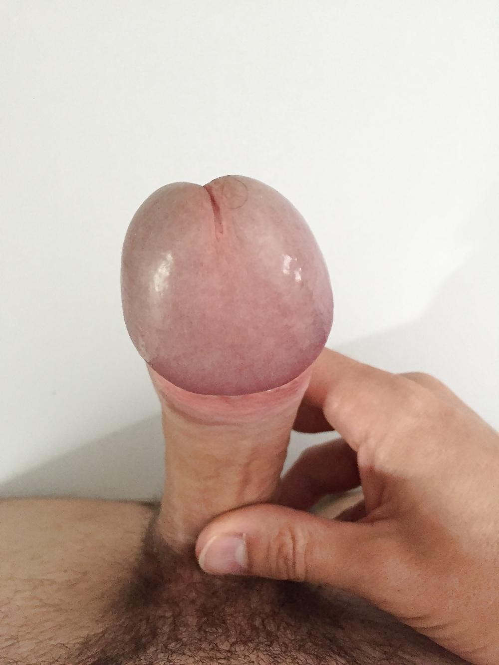 gay porn star arrested jail