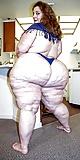 compilation of bbw big ass (4)